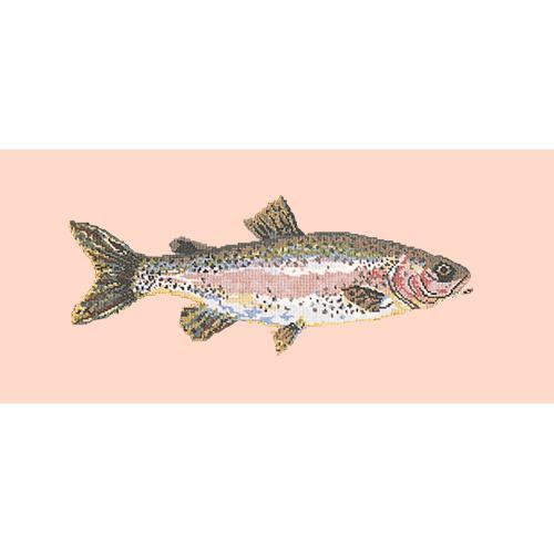 Rainbow Trout Needlepoint Kit Elizabeth Bradley Design Salmon Pink