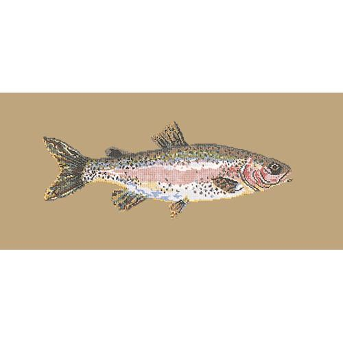 Rainbow Trout Needlepoint Kit Elizabeth Bradley Design Sand