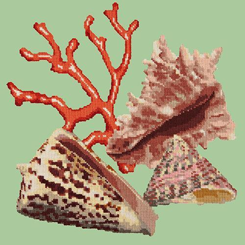 Red Coral Needlepoint Kit Elizabeth Bradley Design Pale Green