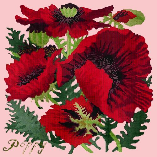 Red Poppy Needlepoint Kit Elizabeth Bradley Design Pale Rose