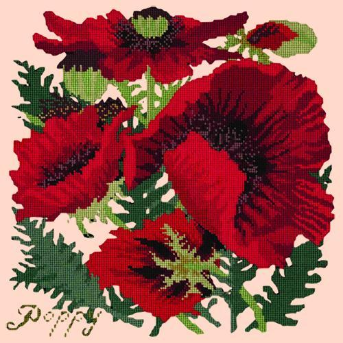 Red Poppy Needlepoint Kit Elizabeth Bradley Design Salmon Pink