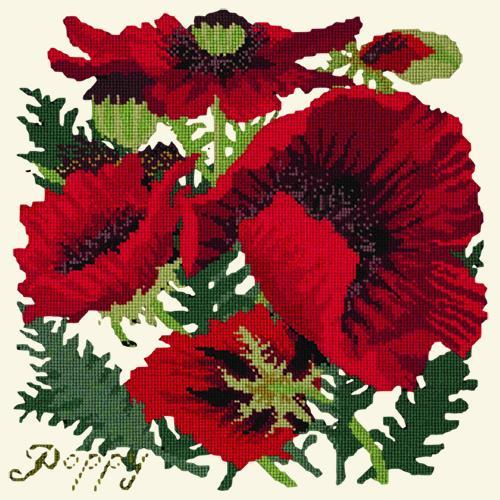 Red Poppy Needlepoint Kit Elizabeth Bradley Design Winter White