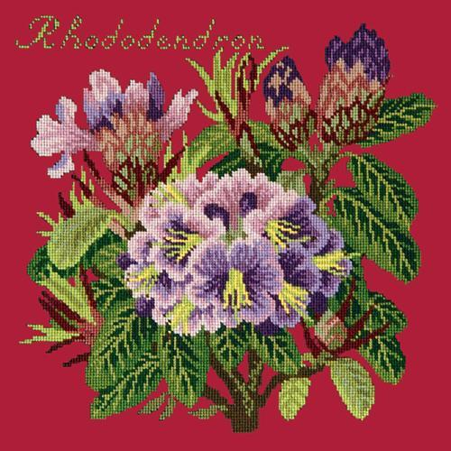 Rhododendron Needlepoint Kit Elizabeth Bradley Design Bright Red