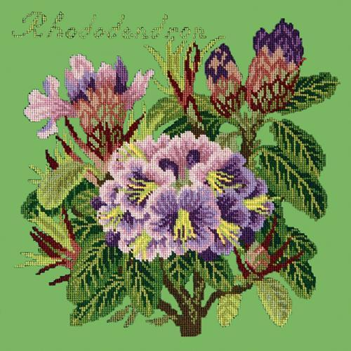 Rhododendron Needlepoint Kit Elizabeth Bradley Design Grass Green