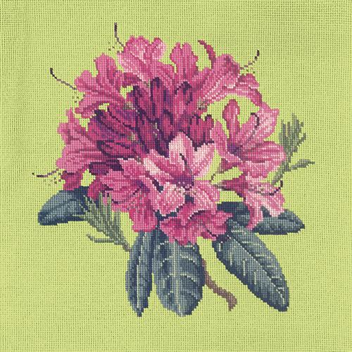 Rhododendron Needlepoint Kit Elizabeth Bradley Design Pale Lime
