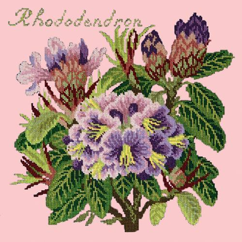 Rhododendron Needlepoint Kit Elizabeth Bradley Design Pale Rose