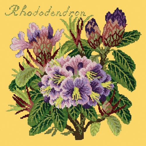 Rhododendron Needlepoint Kit Elizabeth Bradley Design Sunflower Yellow