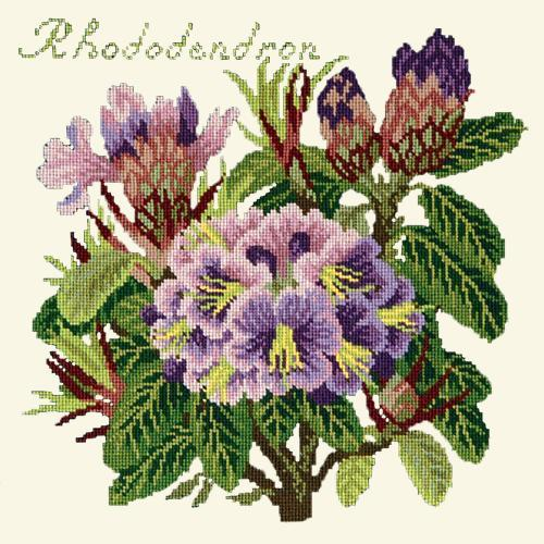 Rhododendron Needlepoint Kit Elizabeth Bradley Design Winter White