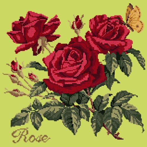 Rose Needlepoint Kit Elizabeth Bradley Design Pale Lime