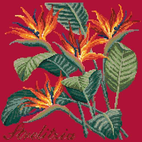 Strelitzia (Bird of Paradise) Needlepoint Kit Elizabeth Bradley Design Bright Red