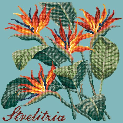 Strelitzia (Bird of Paradise) Needlepoint Kit Elizabeth Bradley Design Duck Egg Blue