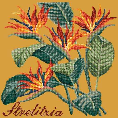 Strelitzia (Bird of Paradise) Needlepoint Kit Elizabeth Bradley Design Yellow