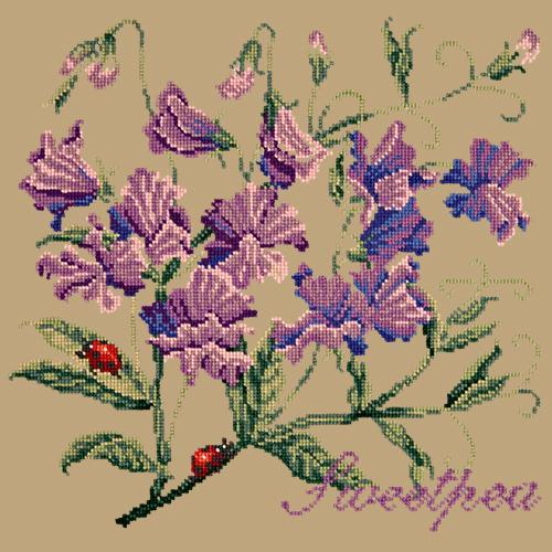 Sweetpea Needlepoint Kit Elizabeth Bradley Design Sand