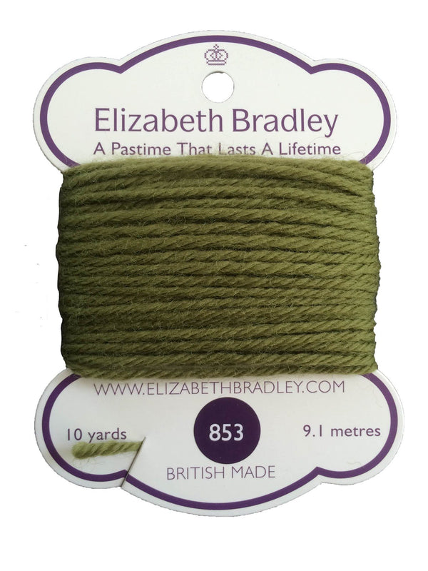 Tapestry Wool Colour 853 Tapestry Wool Elizabeth Bradley Design
