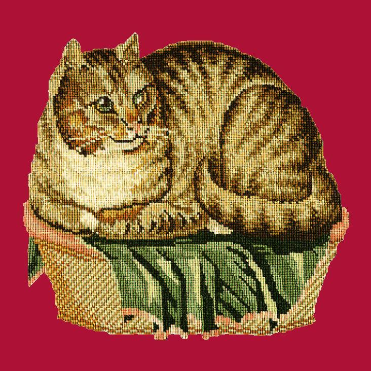 The Contented Cat Needlepoint Kit Elizabeth Bradley Design Bright Red