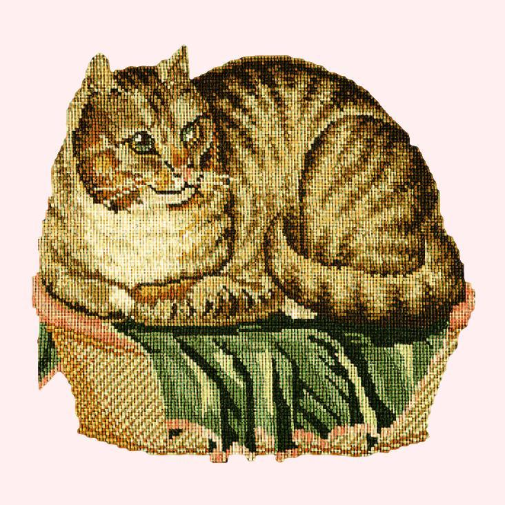 The Contented Cat Needlepoint Kit Elizabeth Bradley Design Cream