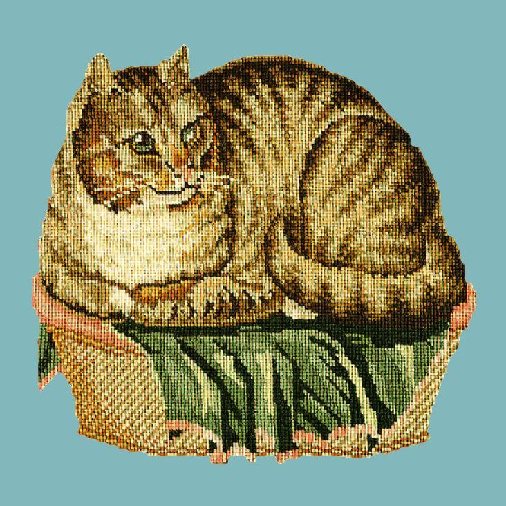 The Contented Cat Needlepoint Kit Elizabeth Bradley Design Duck Egg Blue