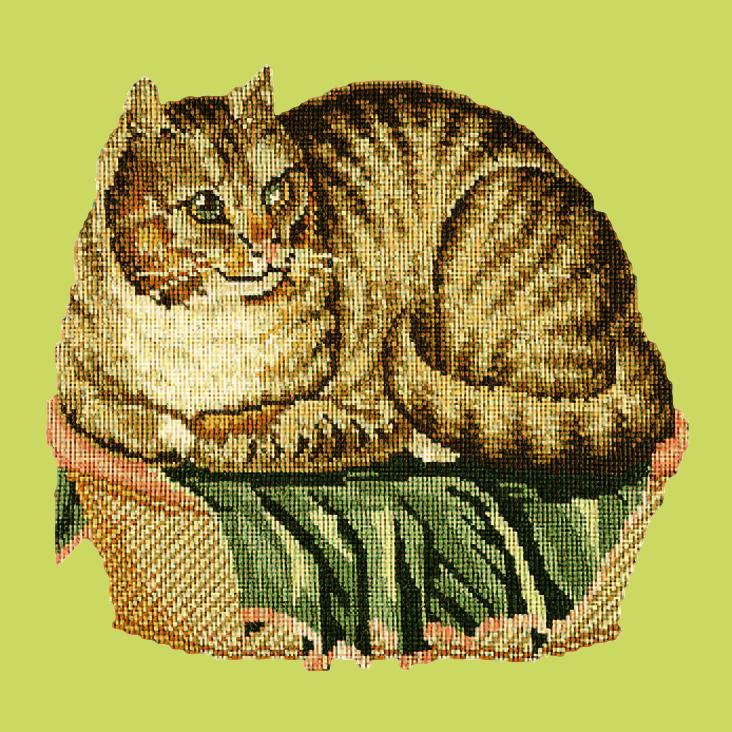 The Contented Cat Needlepoint Kit Elizabeth Bradley Design Pale Lime