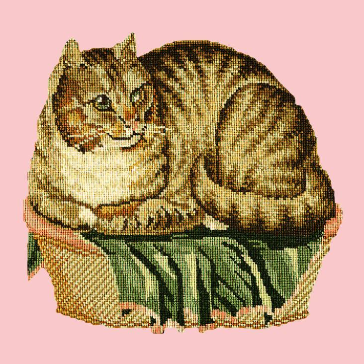 The Contented Cat Needlepoint Kit Elizabeth Bradley Design Pale Rose