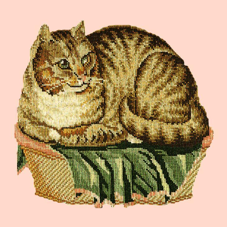 The Contented Cat Needlepoint Kit Elizabeth Bradley Design Salmon Pink