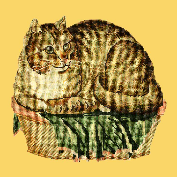 The Contented Cat Needlepoint Kit Elizabeth Bradley Design Sunflower Yellow