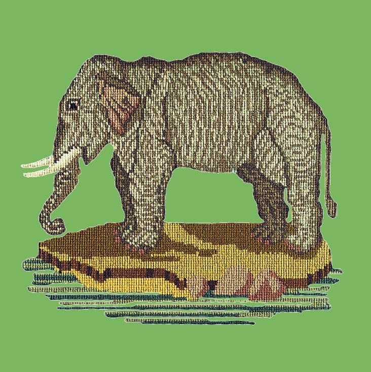 The Elephant Needlepoint Kit Elizabeth Bradley Design Grass Green