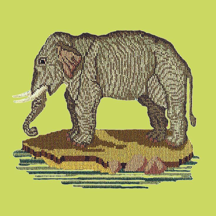 The Elephant Needlepoint Kit Elizabeth Bradley Design Pale Lime