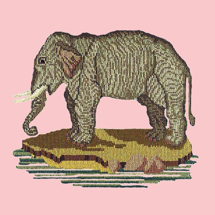 The Elephant Needlepoint Kit Elizabeth Bradley Design Pale Rose