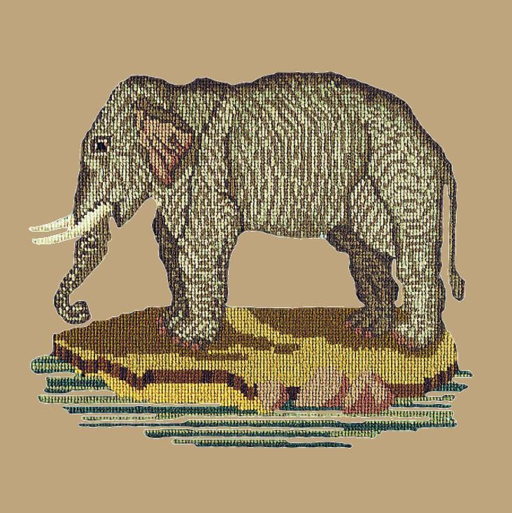 The Elephant Needlepoint Kit Elizabeth Bradley Design Sand