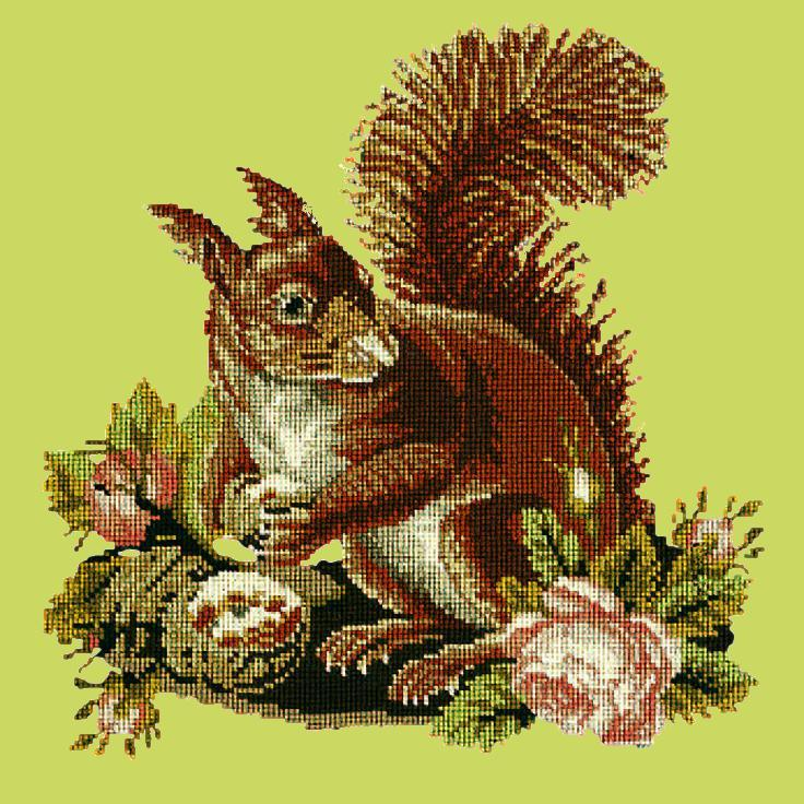 The Squirrel Needlepoint Kit Elizabeth Bradley Design Pale Lime