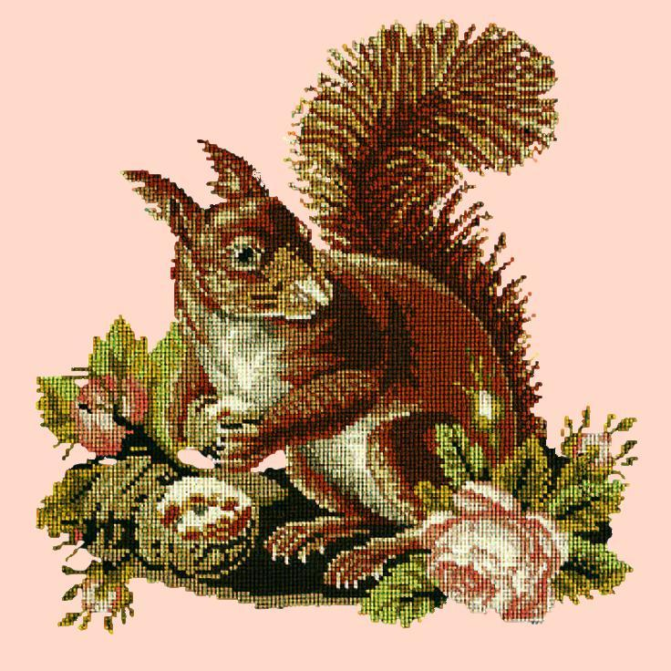 The Squirrel Needlepoint Kit Elizabeth Bradley Design Salmon Pink
