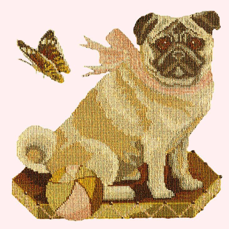 Toby the Pug Needlepoint Kit Elizabeth Bradley Design Cream