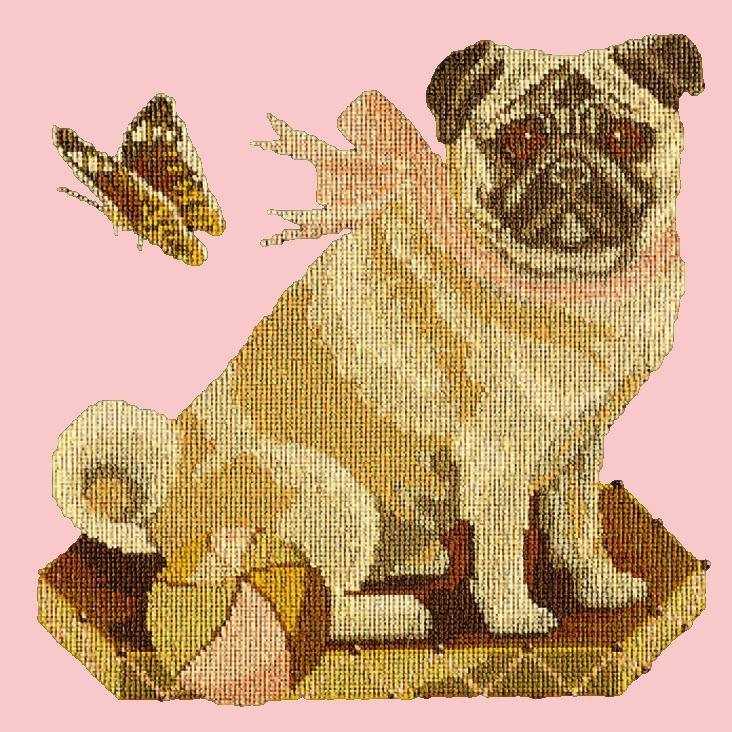 Toby the Pug Needlepoint Kit Elizabeth Bradley Design Pale Rose