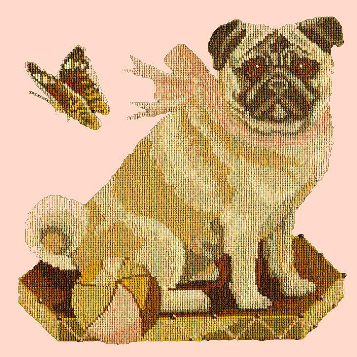 Toby the Pug Needlepoint Kit Elizabeth Bradley Design Salmon Pink