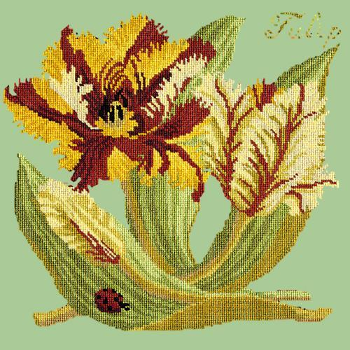 Tulip Needlepoint Kit Elizabeth Bradley Design Pale Green
