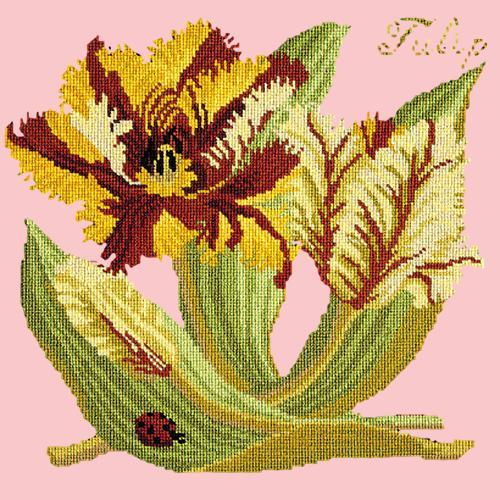 Tulip Needlepoint Kit Elizabeth Bradley Design Pale Rose