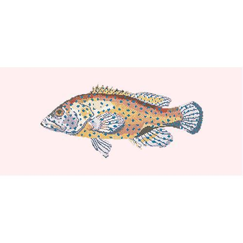 Vermilion Seabass Needlepoint Kit Elizabeth Bradley Design Cream