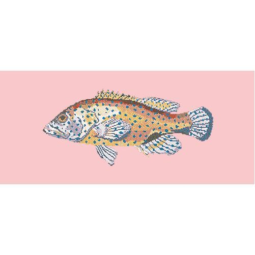 Vermilion Seabass Needlepoint Kit Elizabeth Bradley Design Pale Rose