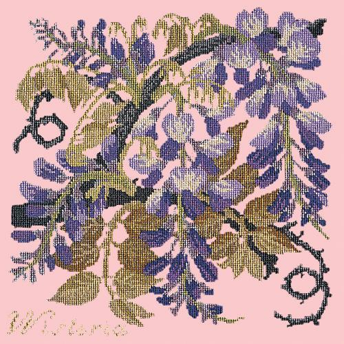 Wisteria Needlepoint Kit Elizabeth Bradley Design Pale Rose