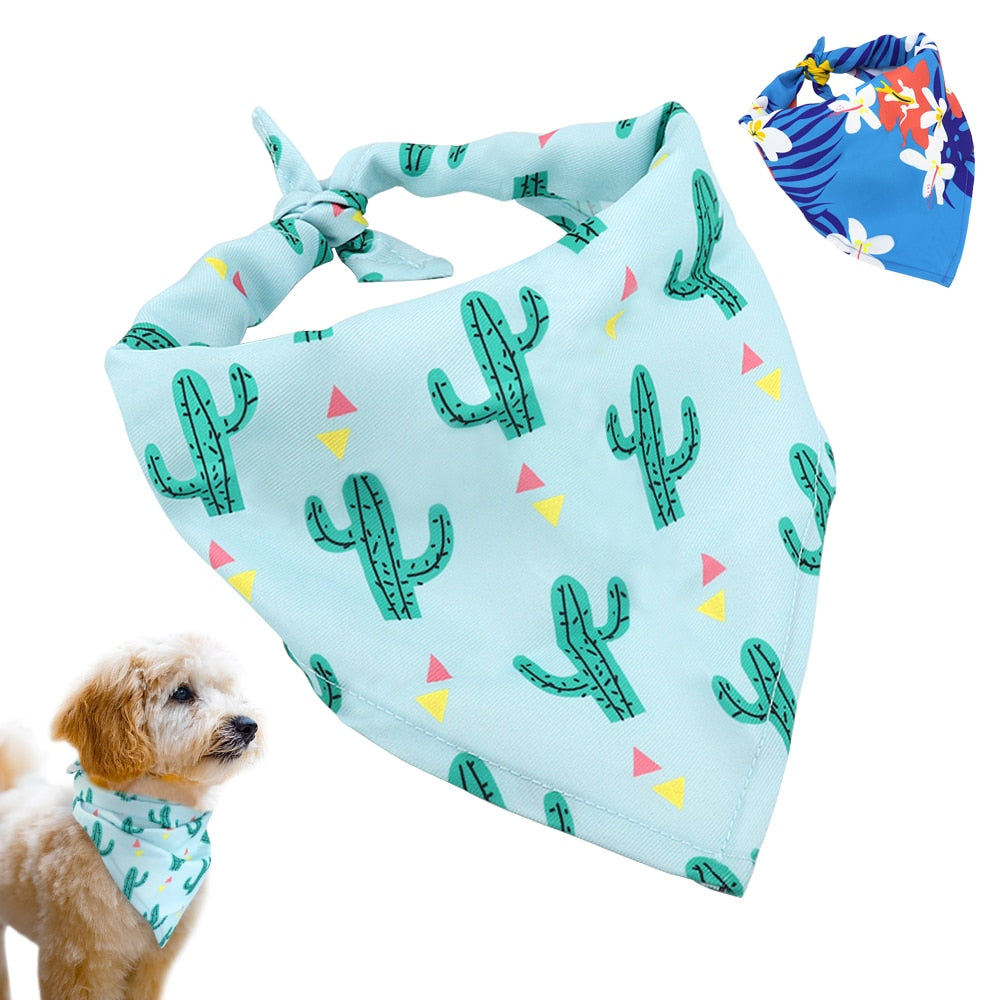 Dog Cat  Cactus Bandana