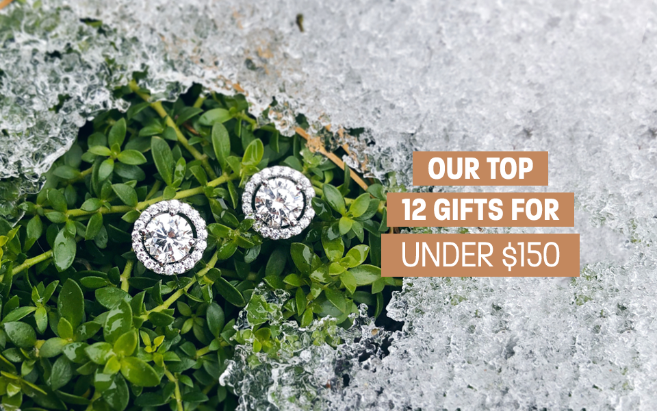 12 Days of Gifting - our top twelve gifts for under $150 - Monroe, MI