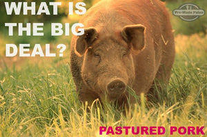 What is all this talk about pastured pork? Find out here!