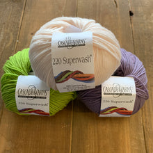 Load image into Gallery viewer, Cascade 220 Superwash