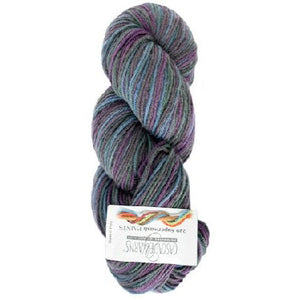 Cascade 220 Superwash Paints