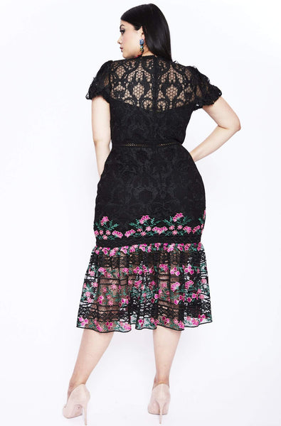 Lorelai Lace Midi Dress by ML Monique Lhuillier - RENTAL