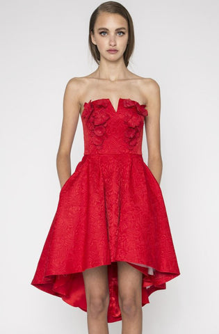 Lula Dress by Narces in Red - Rental