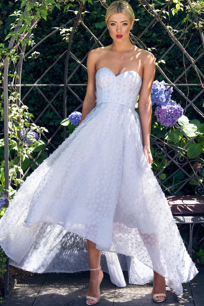 Bradshaw Bustier Strapless Gown by Bariano - RENTAL
