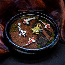 Load image into Gallery viewer, Harmony XIII - 100mm Miniature Koi Pond