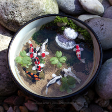 Load image into Gallery viewer, Serenity VII - 110mm Miniature Koi Pond
