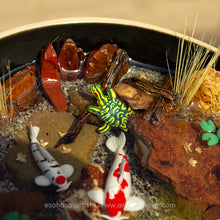 Load image into Gallery viewer, Solidarity VI - 120mm Miniature Koi Pond